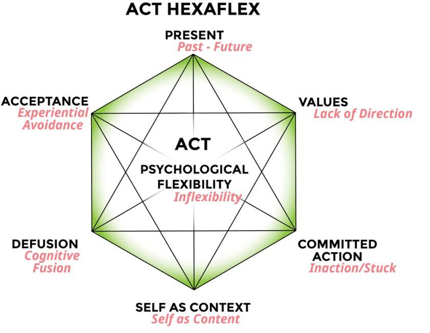 ACT+Hexaflex.jpg